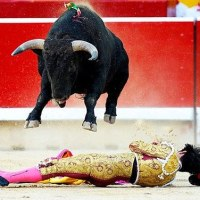 The Right Endings of Bullfights