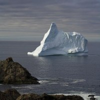 The Icebergs of Newfoundland