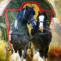 Gypsy Waggon