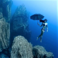 Diving with Umbrellas